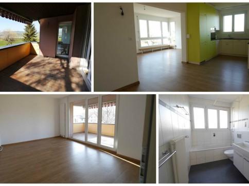 Neu renovierte 4.5-Zimmer-Wohnung an attraktiver Lage in Buttikon SZ