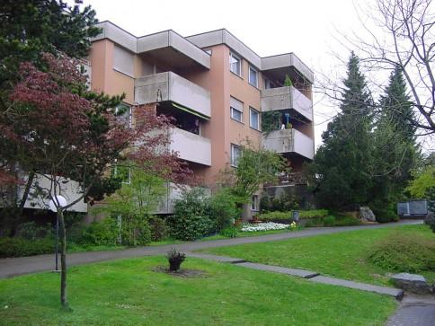 renovierte 4,5-Zimmerwohnung in Wiedlisbach