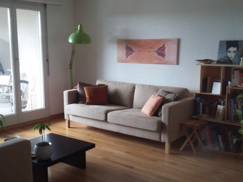 schöne, helle 1.5 Zimmer Wohnung in Bremgarten