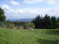 TOP Bauland in Rumisberg 1333m2 land! mit WIR Anteil!