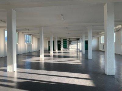 Loft - Raum mit Säulen und Ausgang zu Lift und kleinem sep. Raum