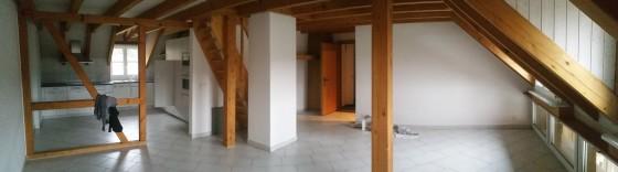 Eingang, Wohnzimmer und Küche