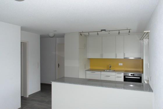 offene und moderne Küche.