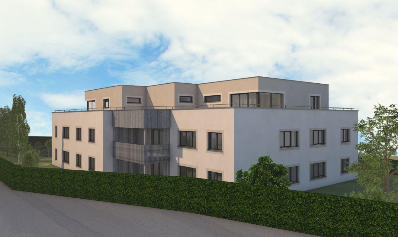 Neubau Kestenholz