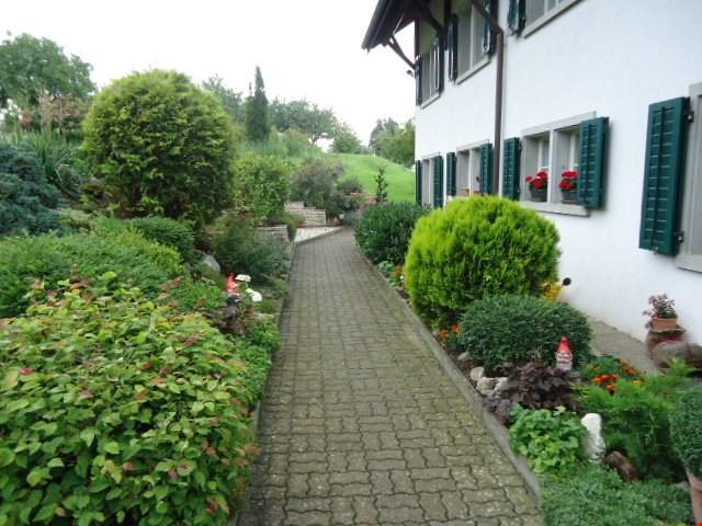 2.5-Zimmer-Dachmaisonette-Wohnung mit Wohnküche 31811058