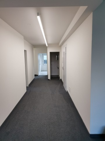 Helles Büro 120m2 in Baar 31849418