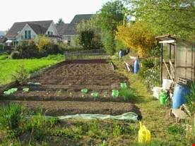 Gemüsegartenanteil