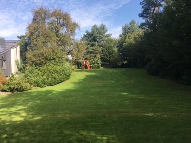 Grosszügiges Grundstück mit altem Baumbestand 22105762