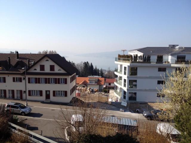 1.5 Zimmer-Wohnung im Steuerparadis Feusisberg 31126332
