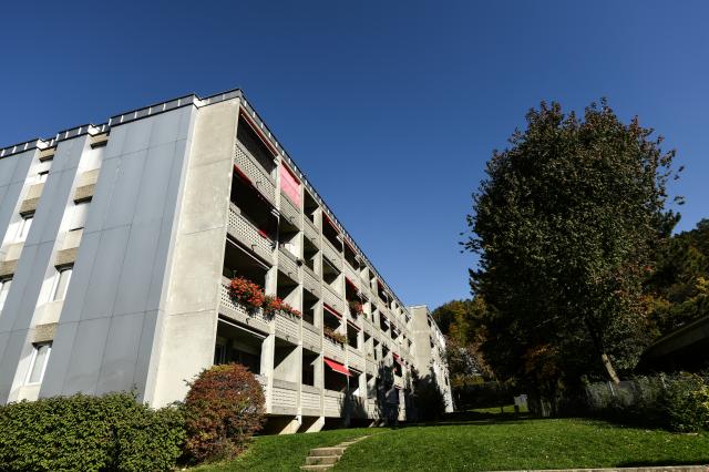 Sehr gutes Preis-Leistungs-Verhältnis / sanierte Wohnung 31114816