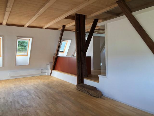 Grosszügige, moderne 100qm-Wohnung in renoviertem Bauernhaus 31126331