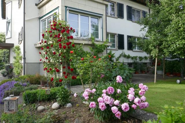 Erstvermietung: Top sanierte Wohnung mit Gartensitzplatz in  32792023