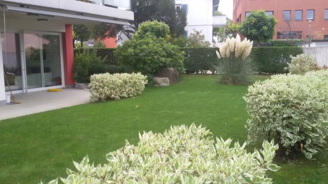 Neuwertige sonnige 4,5 Zimmer Gartenwohnung mitten im Zentru 21596006