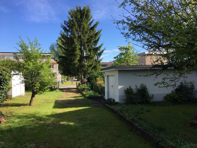Bauland in Reinach BL 19619451