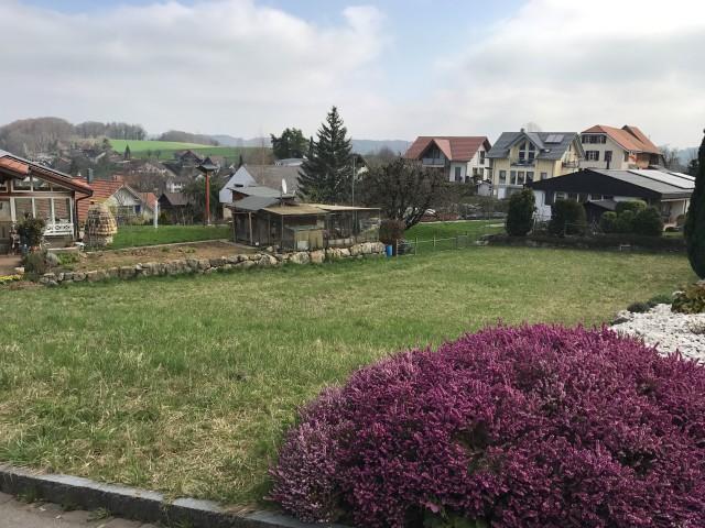 Bauland in Lampenberg 19681413