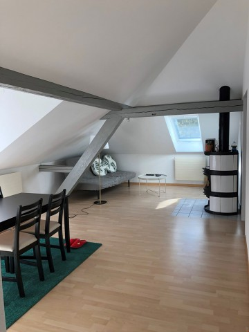 Great light 3 rooms apartment in the center of St Gallen 31519728