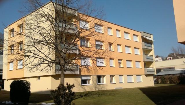 Joli appartement de 2 pièces proche du lac 21258295