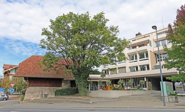 Thun - Büro, Praxis, Therapie, Schulung an hervorragender La 31154235