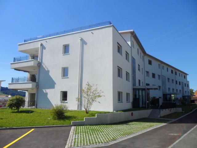 Schöne Wohnung in Meisterschwanden 22770815