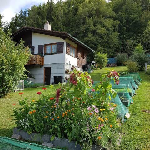 Süsses kleines Ferien-Chalet am Waldrand 25140386