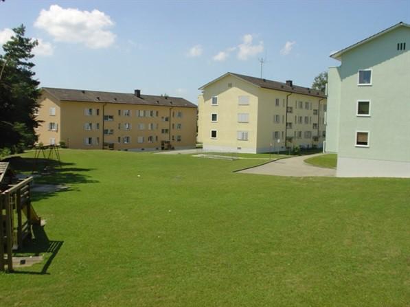 1-Zimmerwohnung: Klein, gepflegt und mit grüner Aussicht 31445220