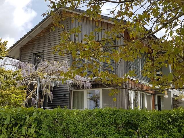 Wohnen und arbeiten an ruhiger unverbaubarer Lage in Rheinnä 29496453