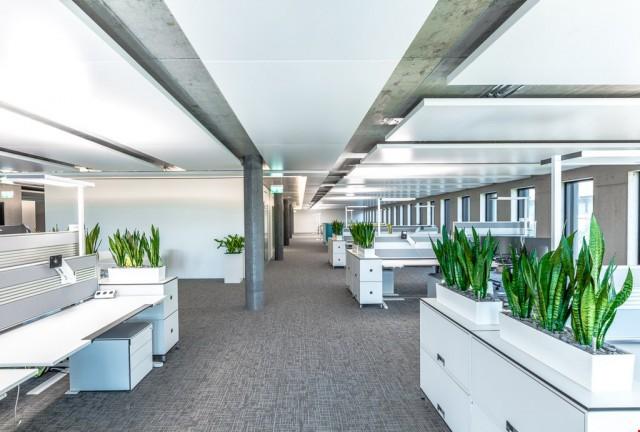 Hochwertige & repräsentative Büroflächen 31786962