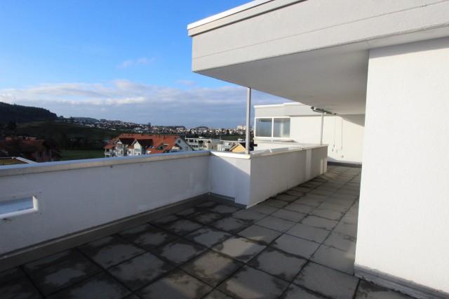 helle, moderne Wohnung mit grosser Terrasse sucht neuen Miet 23635524