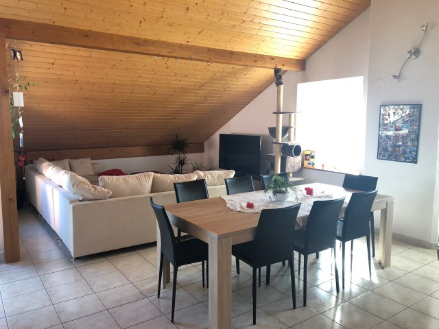Grand appartement aux combles 26358073