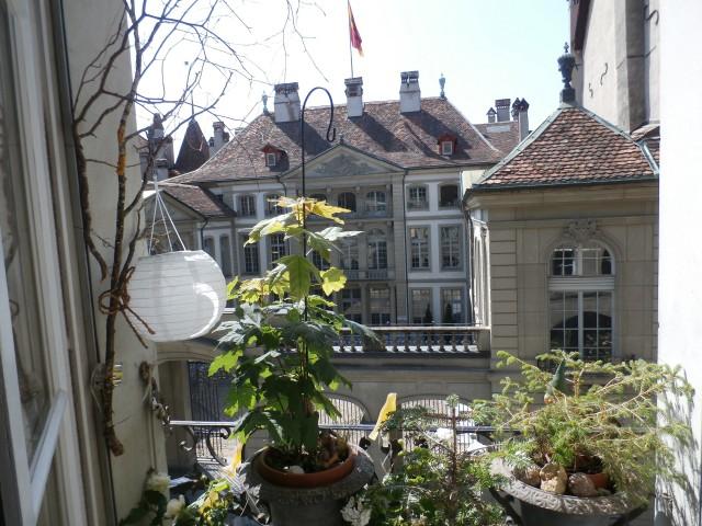 Schöne, sonnige Altstadtwohnung 29946117