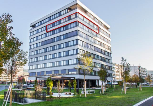 Exclusive Sehr Helle & Zentral Gelegene 5.5-Zimmer Wohnung 25907595