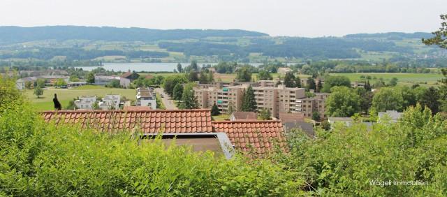 Den Sommer am Greifensee geniessen in der nahen Eigentumswoh 24523268