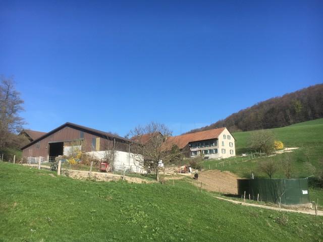 Kleiner Landwirtschaftsbetrieb im Kanton Solothurn 24489086