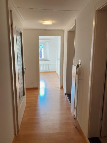 Zu vermieten 2 1/2 Zimmer-Wohnung 31758303