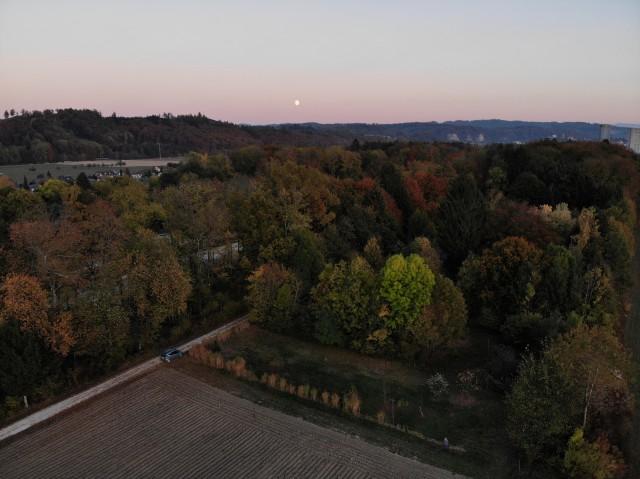 Ansicht auf den Park