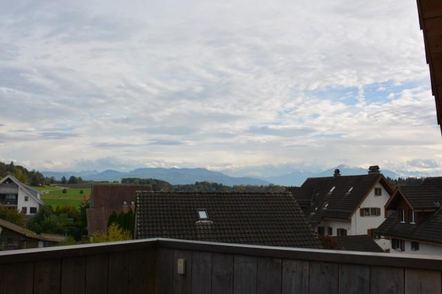 Lichtdurchflutete Attikawohnung in Mettmenstetten 31154416