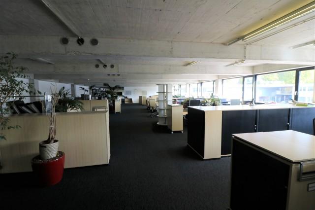 Grosse Bürofläche mit Tageslichteinfall