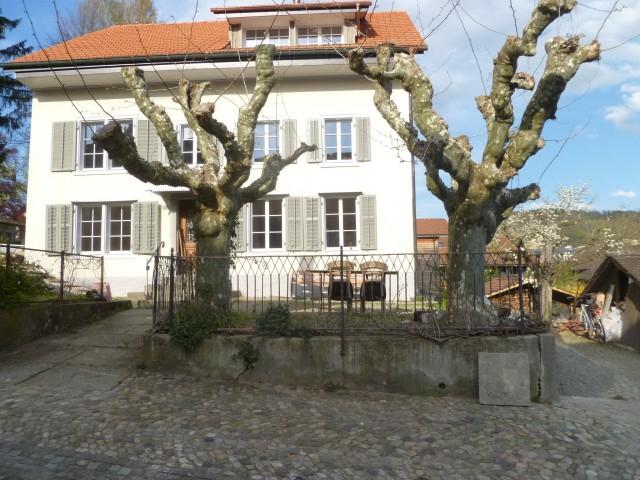 Hohe Wohnqualität in Unterwindisch an der Reuss 31154418