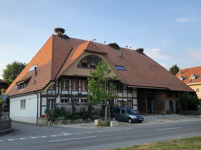 Luxuriöse Dachwohnung 29923641