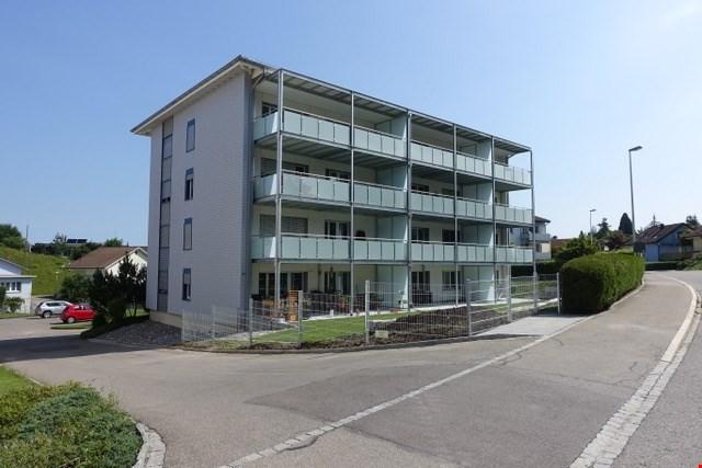 Schöne renovierte 2,5-Zimmerwohnung an ruhiger sonniger Lage 32369851