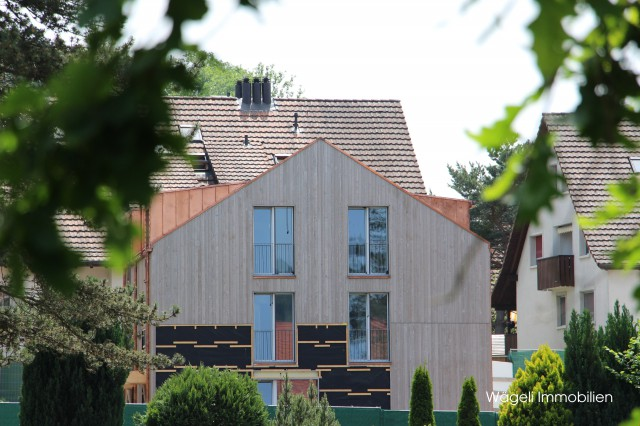 Moderne Architektur in ruhiger Umgebung - OBERHITTNAU ZH 24523269