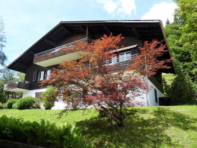 DG-Wohnung mit toller Aussicht 21595997