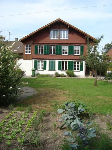 Charmant renovierte Altbau-Wohnung mit Wohnküche in Zweifami 26306939