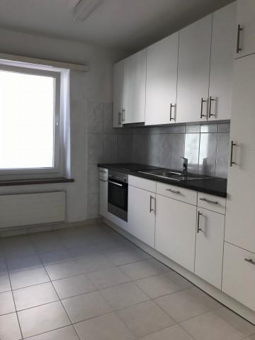 3.5-ZWG mit Balkon und neuer Küche 19668998