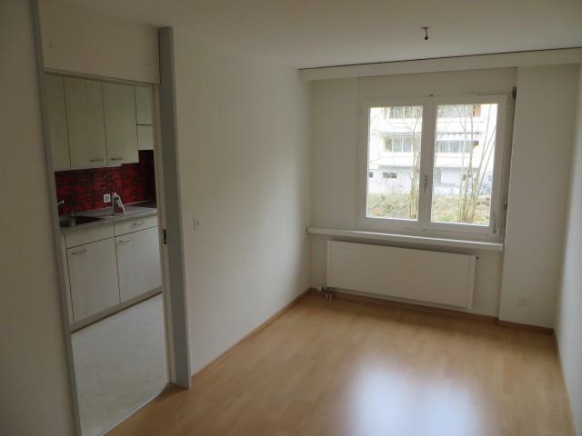 4 1/2-Zimmer-Wohnung neu renoviert 21226787
