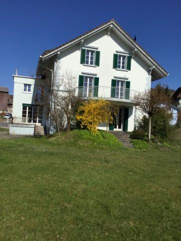 Neu renovierte Dachwohnung in Pfaffnau 25200995