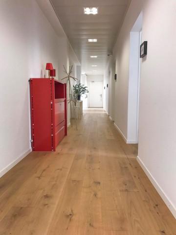 Ihr neues Büro in der Bürogemeinschaft «Kollektiv29» im Scha 21624382