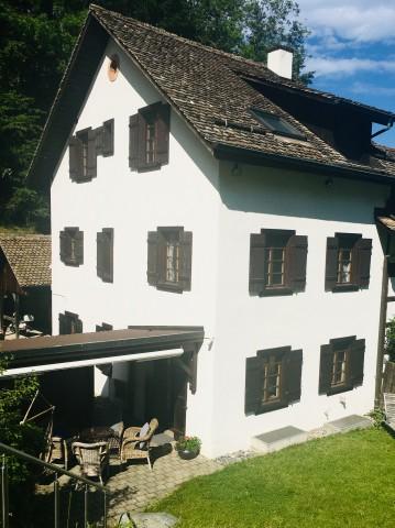 Schönes renoviertes Bauernhaus im Grüne 29587828