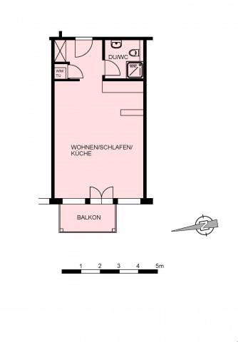 Wunderschöne neu renovierte 1.5 Zimmer-Wohnung 25201234