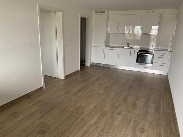 Neue 2-Zimmerwohnung 31773042
